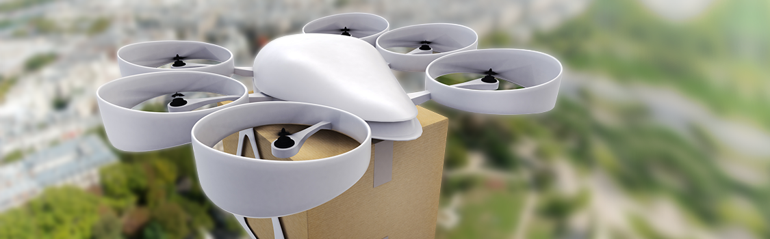 Public Perception of Drone Delivery in the United States Image